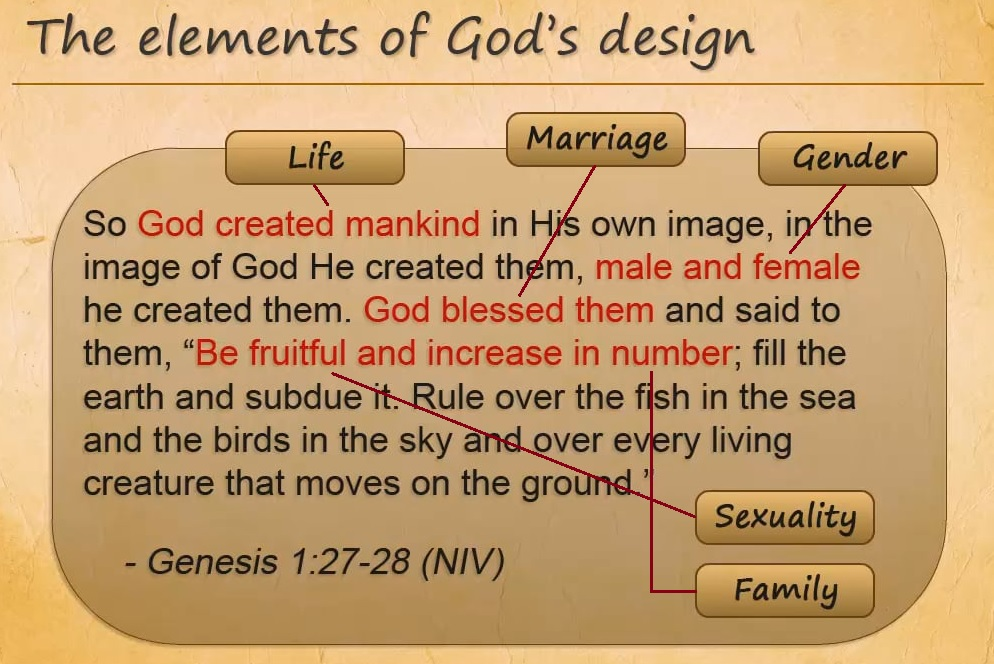 Personhood - Humans are made in the image of God